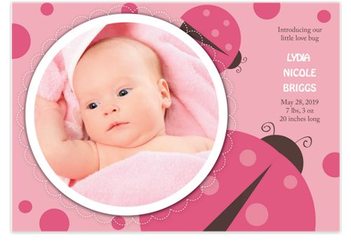 Love Bug Baby Birth Announcement Photo Cards