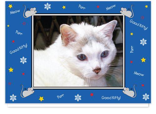 Good Kitty Blue Christmas Photo Cards - $1.38