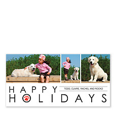 Paws White Christmas Photo Cards