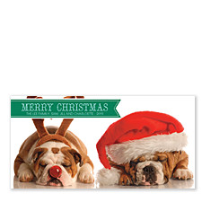 Green Banner Christmas Photo Cards