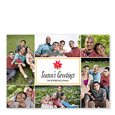 Poinsettia Season's Greetings Christmas Photo Cards