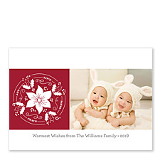 Pretty Poinsettia Holiday Photo Cards