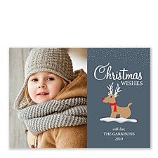 shiny wishes christmas photo cards - Pet Holiday Cards