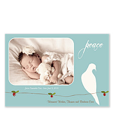 Peace Dove Holiday Photo Cards