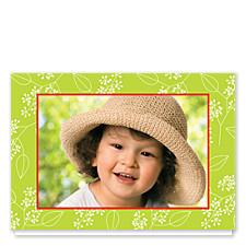 Botanical Photo Holiday Cards