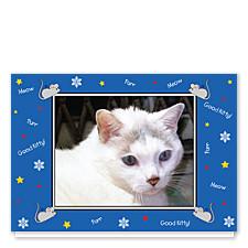 Good Kitty Blue Christmas Photo Cards