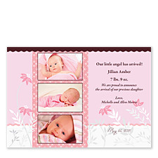 Sugar & Spice Baby Birth Announcement Photo Cards