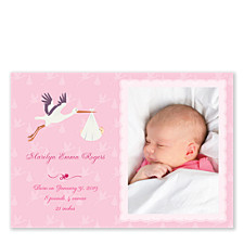 Special Delivery Baby Girl Birth Announcement Photo Cards