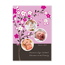 Beginnings Pink Baby Birth Announcement Photo Cards