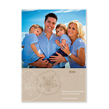 Sand Dollar Holiday Photo Cards
