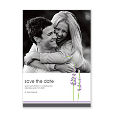 Hollyhock Save the Date Photo Cards